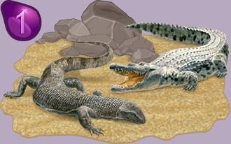 Classement des éleveurs de reptiles par nombre de points d'XP